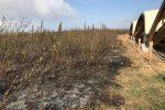Incendio a Vibo, in fiamme le rovine del Parco archeologico del Cofino
