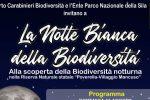 Studiare la fauna e ammirare le stelle, a Taverna la notte bianca della Biodiversità