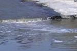 Regione Siciliana, 16 milioni per la pulizia di fiumi e torrenti: 47 interventi a Messina