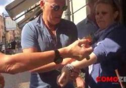 Bruce Springsteen a Como: autografi sugli avambracci dei fan Tutti col braccio teso davanti al Boss, per farselo autografare: normale giornata comasca per Bruce Springsteen, in vacanza su Lago di Como - Corriere Tv