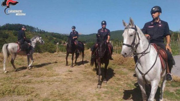 carabinieri a cavallo, nebrodi, Messina, Sicilia, Cronaca