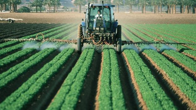 agricoltura calabria, regione, Gianluca Gallo, Calabria, Economia