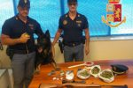 Catanzaro, cocaina e marijuana nascoste nel quartiere Aranceto