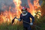 Record di incendi in Amazzonia, sotto accusa la politica ambientale di Bolsonaro