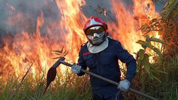 amazzonia, brasile, incendi, Jair Bolsonaro, Sicilia, Mondo