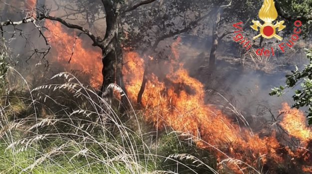 caldo, incendio, mistretta, statale 117, tusa, Messina, Sicilia, Cronaca