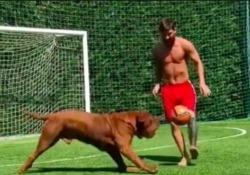 Messi allena i figli con il torello al cane, ma alla fine perde Non è facile sfidare Leo Messi, ma il suo cane è riuscito a spuntarla - Dalla Rete