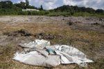Corpi fatti a pezzi e sepolti in Messico, identificati 44 cadaveri