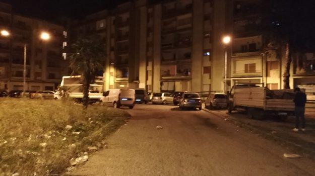 'ndrangheta, operazione crisalide, Catanzaro, Calabria, Cronaca