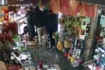 Sottraggono merce in un pasticceria di Messina, Daspo a tre ultras della Nocerina - Video
