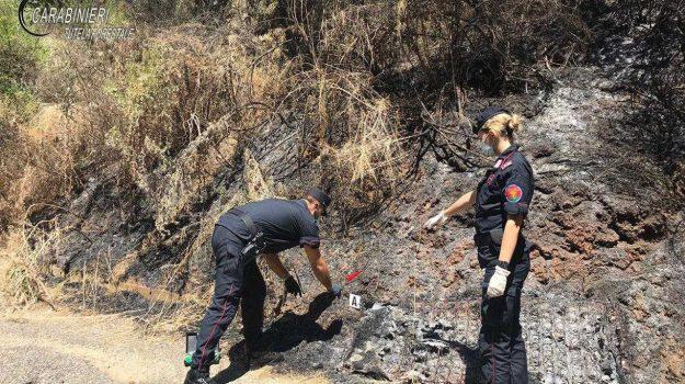 incendio Lattarico, lattarico, Cosenza, Calabria, Cronaca