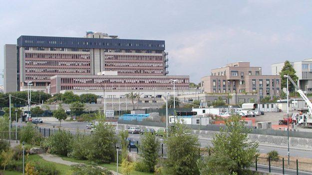 bimbo morto in auto, catania, Sicilia, Cronaca