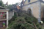 Fulmine sul cimitero di Barritteri, colpito e distrutto un abete secolare - Foto
