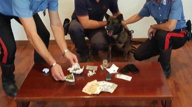 arresti cosenza, arresto Mendicino, droga cosenza, pusher Mendicino, Cosenza, Calabria, Cronaca