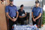 Non era in casa nonostante i domiciliari, arrestato a Santa Cristina d'Aspromonte