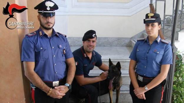 arresti, droga, Reggio, Calabria, Cronaca