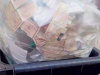Carte d'identità abbandonate tra i rifiuti a Reggio, il Comune avvia un'indagine interna
