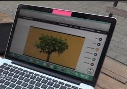 Fridays for Future, band torinese crea piattaforma per piantare una foresta Gli Eugenio in Via di Gioia hanno lanciato Lettera al Prossimo - Ansa