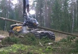 Il taglia alberi: «Il macchinario più spaventoso al mondo» Nelle foreste c'è un «mostro» che taglia gli alberi in pochi secondi: la denuncia del Fondo Forestale Italiano - CorriereTV