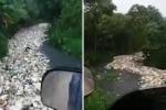 Un fiume di plastica a Santo Domingo, i rifiuti navigano verso il mare: l'accorata denuncia di un cittadino