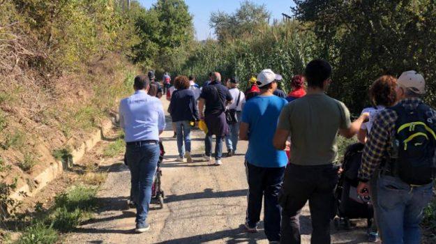 Incontro con la natura a Terranova da Sibari: le foto della Camminata tra gli ulivi