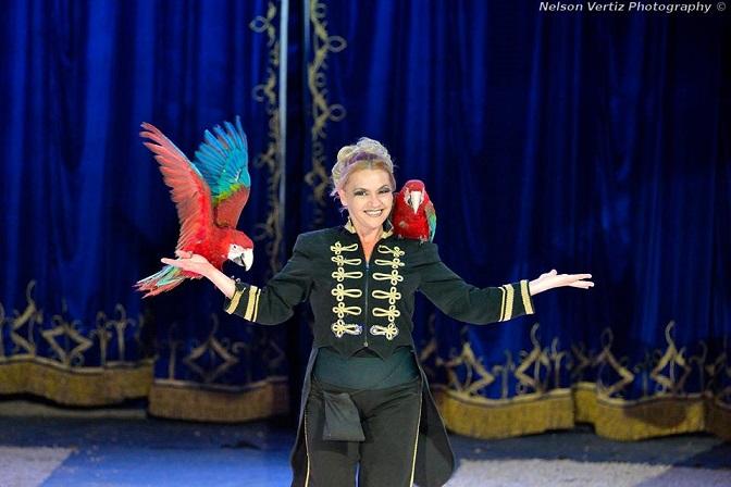 Il circo partirà il 4 ottobre e resterà a Reggio Calabria fino al 13