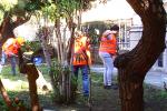 Messina, riaperti i cantieri di lavoro: grande dolore tra i colleghi dell'operaio morto