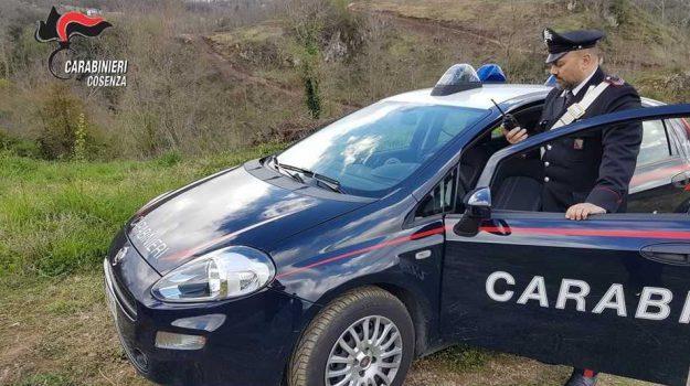 suicidio, Cosenza, Calabria, Cronaca