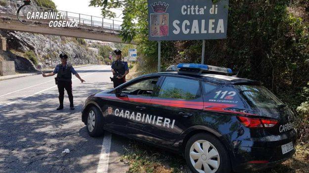 arresti Scalea, operazione Plinius 2, tentata estorsione, Cosenza, Calabria, Cronaca
