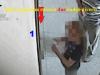 """Badge """"strisciati"""" anche da ragazzini, indagati 48 dipendenti del Comune di Piedimonte Etneo - Video"""