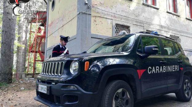 camigliatello silano, carabinieri, Cosenza, Calabria, Cronaca