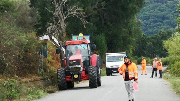 viabilità Vibo, Catanzaro, Calabria, Cronaca