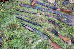 Controlli in provincia di Reggio, scoperte armi e piantagioni di cannabis - Foto