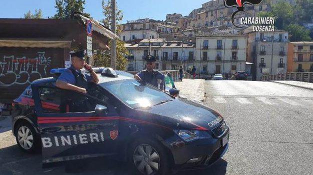 criminalità, Cosenza, Calabria, Cronaca