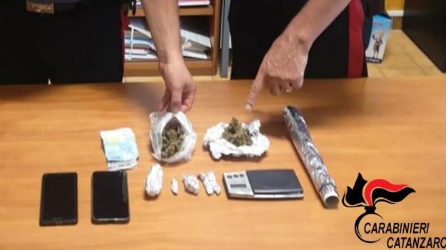 droga, marijuana, spaccio, Catanzaro, Calabria, Cronaca