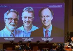 Nobel per la Medicina 2019: premiati Kaelin, Ratcliffe e Semenza Hanno scoperto il meccanismo molecolare che regola l'attività dei geni in risposta al variare dei livelli di ossigeno - Ansa