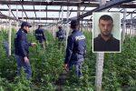 Traffico di marijuana nel Vibonese, chieste 10 condanne: c'è anche il figlio del boss Mancuso - Nomi e foto