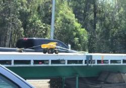 Trasporto eccezionale (oppure no?) Il simpatico video girato su una strada nella Sunshine Coast, in Australia - CorriereTV