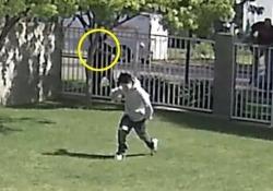 Usa: poliziotto spara e uccide 16enne disarmato che sta scappando Il filmato diffuso dalla famiglia del ragazzo. L'incidente risale all'aprile del 2017 - CorriereTV