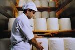 Latte: Consorzio pecorino a Bellanova, urge sistema europeo