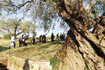 Le bellezze nascoste della Sicilia orientale in un documentario