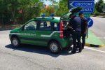 Rossano, smaltiva illegalmente reflui inquinanti: denunciato il proprietario di un frantoio