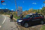 """""""Casa con pollaio e porcile costruita abusivamente"""", tre denunciati a San Luca"""