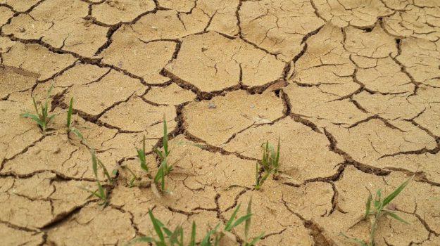 crisi idrica Crotone, Roberto Torchia, Catanzaro, Calabria, Economia