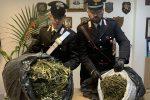 Aveva in casa oltre 7 chili di droga, arrestato a Santo Stefano di Camastra