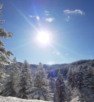 Calabria, le vette della Sila si imbiancano: arriva la prima neve