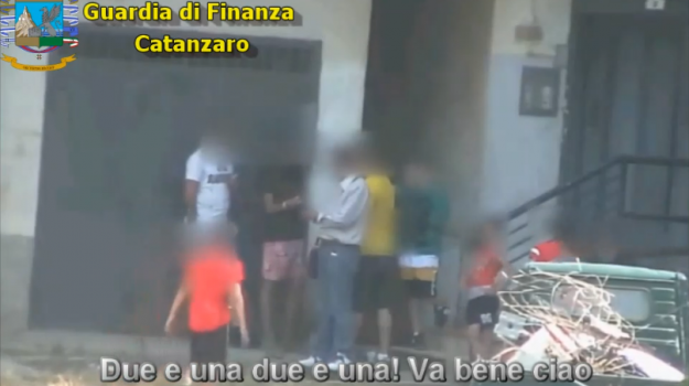 droga, scacco alla regina, Catanzaro, Calabria, Cronaca