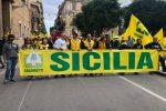 Agricoltura siciliana in crisi, i coltivatori scendono in piazza: corteo di protesta a Palermo - Foto