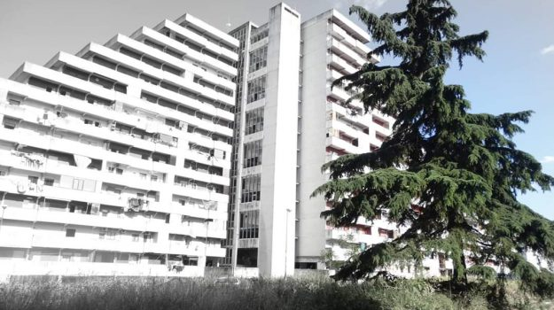 studente, suicidio, Cosenza, Calabria, Cronaca