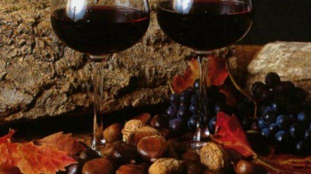 coldiretti, novello, vino, Terra e Gusto